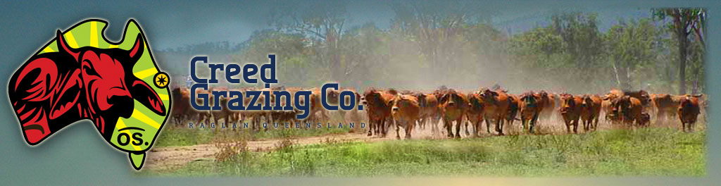 Creed Grazing Station Stay